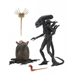 Alien 1979 figurine Ultimate 40th Anniversary Big Chap 23 cm