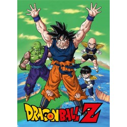 Dragon Ball couverture polaire Namek 100 x 150 cm