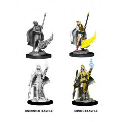 Pathfinder Battles Deep Cuts pack miniatures à peindre Human Oracle (Magic User) (2)
